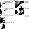 41-body_img_129.jpg
