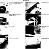 41-body_img_136.jpg