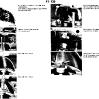 41-body_img_49.jpg