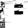 51-body_equipment_img_27.jpg