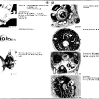 12-engine_electrical_equipment_img_25.jpg