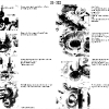 23-manual_transmission_img_104.jpg